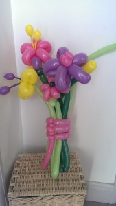 Balloon flowers 2